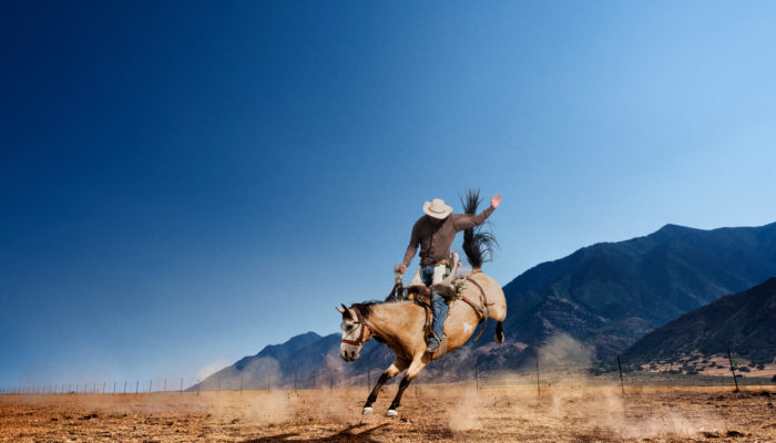 Colorado: Heimat der Cowboys  (Bild: ©stevecoleimages)